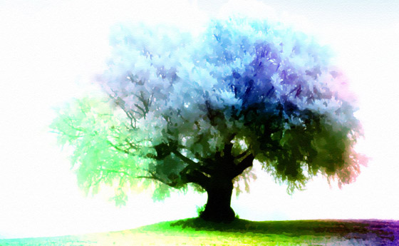 season-tree-wallpaper-11 | Apple Mist